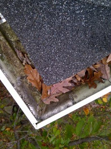 clean roof gutters to prevent storm damage