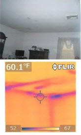 water damaged buildings and mold don't have to go together if infra red cameras are used