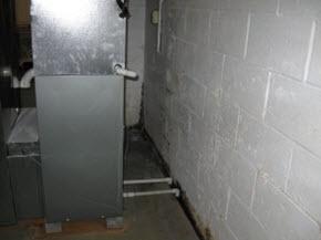 Medford, NJ basement mold