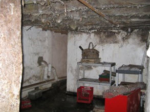 mold growing from basement rafters in foreclosed property