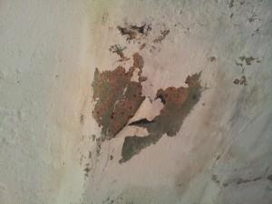 Peeling paint caused by efflouressence