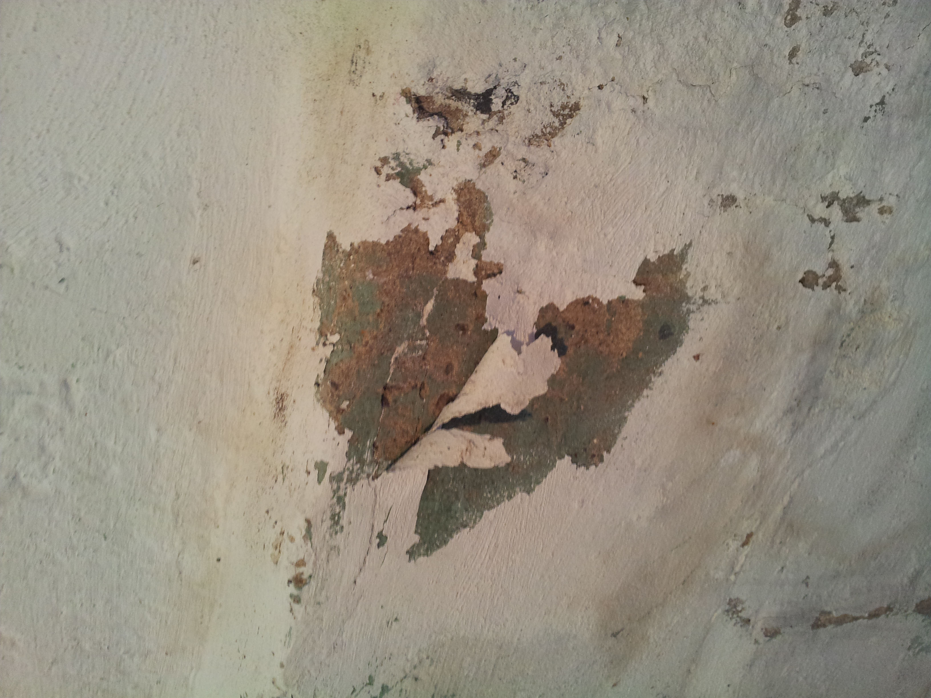 efflouressence can cause paint to peel off basement walls