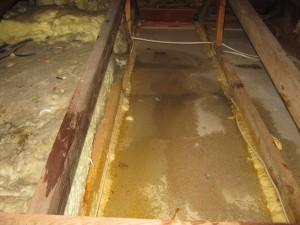 water damage under tarp causing ceiling water damage below