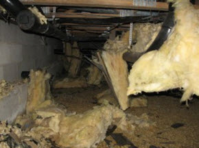 mold damage follows water damage in this crawl space in Ocean City, NJ