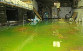 category 3 water damage: sewage backup in a Center City Philadelphia office
