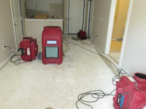 necessary equipment after a flood