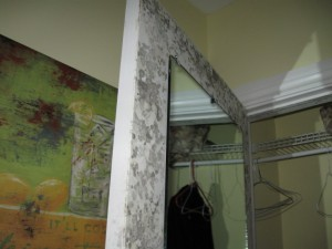Mold growth in an Ocean City New Jersey home