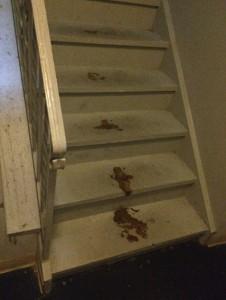 biohazard clean up in Cherry Hill, NJ