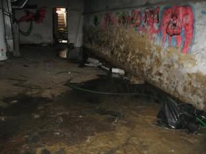 odor causing sewage back up