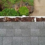 prevent water damage by clearing gutters