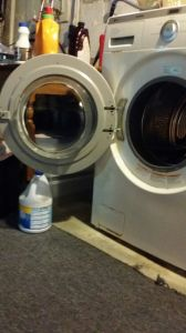mold growth in washing machines - a growing problem!