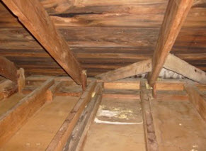 attic mold growth in Cherry Hill, NJ