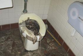 Sewage Backup Black Water Damage