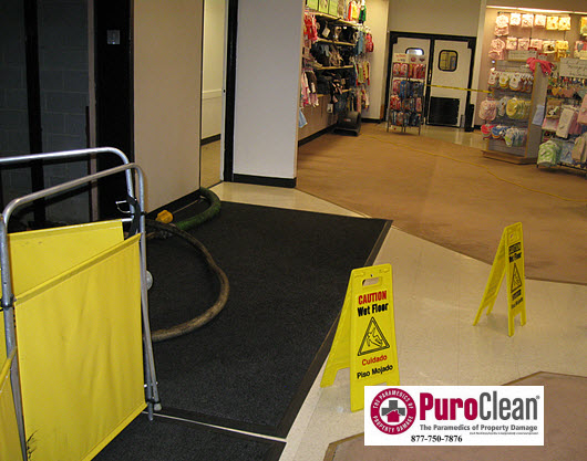emergency water damage restoration for commercial properties
