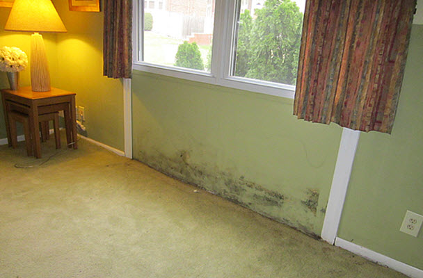too late to prevent mold damage to this Marlton, NJ home