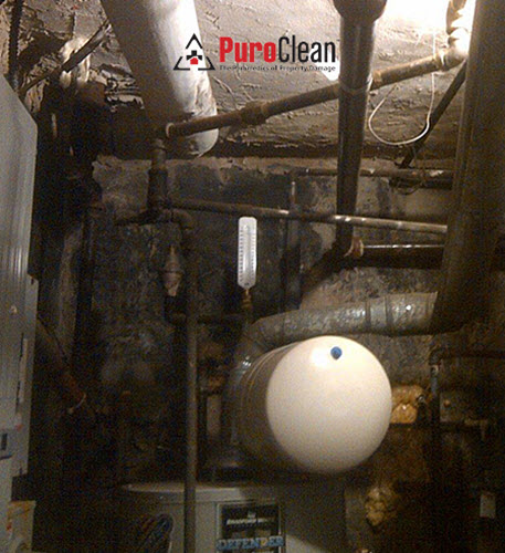 commercial mold remediation in Cheltenham PA boiler room