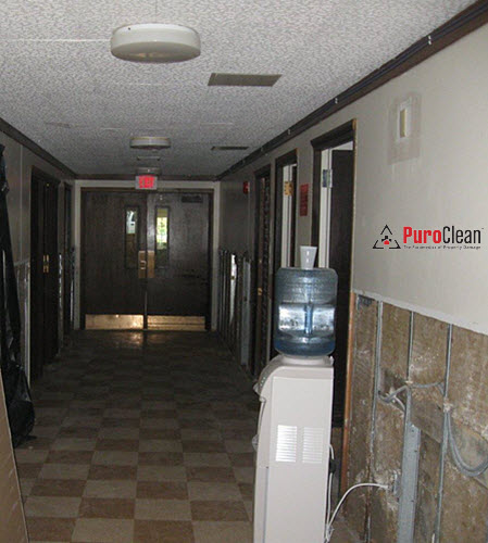 commercial mold remediation in a Philadelphia area church