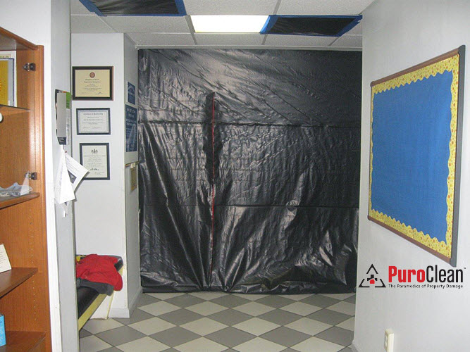 commercial mold remediation in a school
