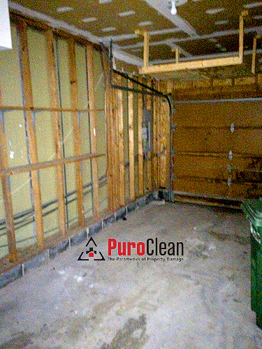 how to remove garage mold