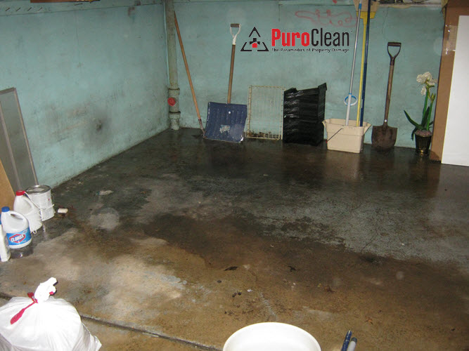 business owner a sewage backup in their basement caused a disruption