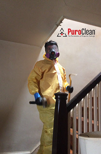 biohazard cleanup personal protective equipment