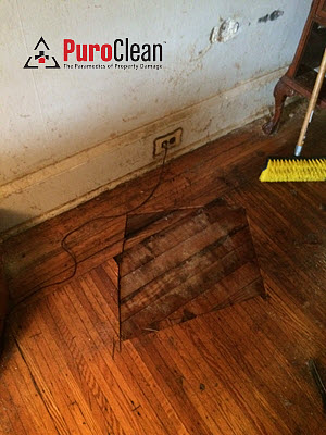 hardwood floor removed during death scene cleanup