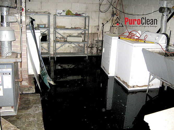 sewage backup cleanup Philadelphia