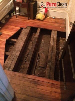 Philadelphia, PA: removing the flooring to contain the biohazard