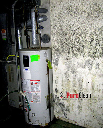 Because new research findings indicate drywall is already contaminated with mold spores, all it needs to bloom is moisture, like it did for these homeowners in Cherry Hill, NJ when their hot water heater burst