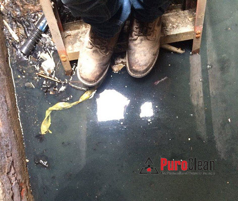 Sewage Cleanup Philadelphia Basement