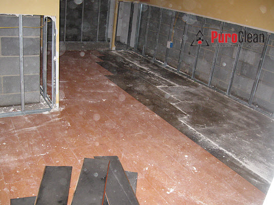 Sewage Loss Cleanup Includes Removing Laminate Flooring Puroclean