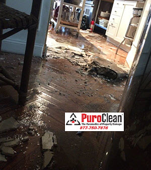 Frequently Asked Questions About Water Damage Restoration