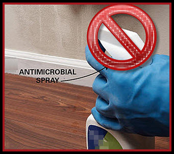 mold cleaning tips: don't spray mold!