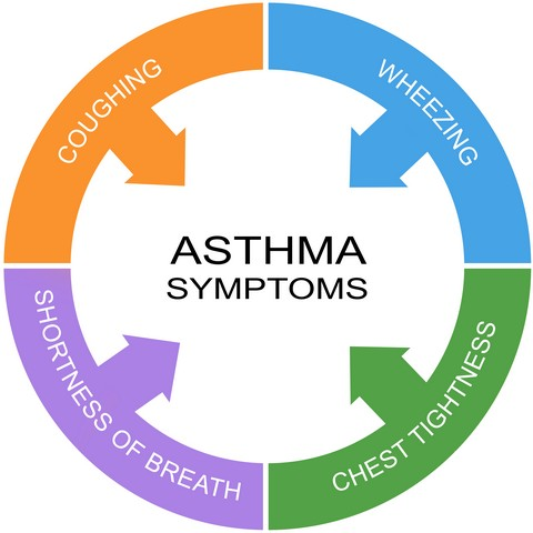 Mold Exposure Is Linked To Asthma!