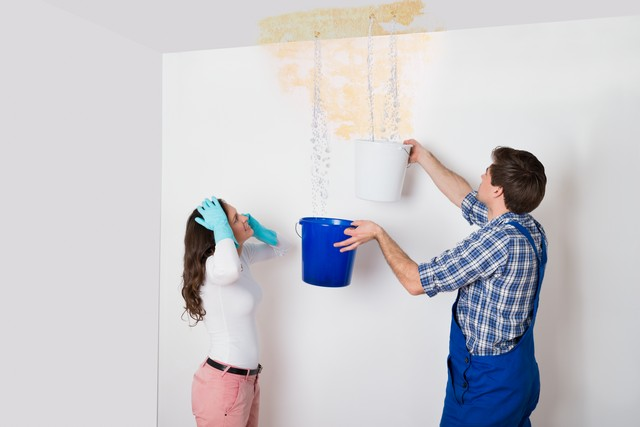 The Key To Preventing Mold Is Moisture Control!