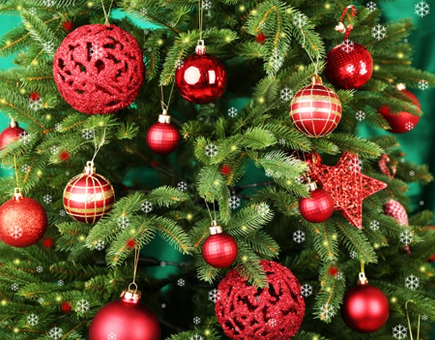 Your Christmas Tree Is Not Only A Fire Hazard, But Can Also Make You Sick From Mold!